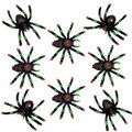 Black and Red Tip Spiders 8ct