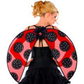 Ladybug Wings Adult